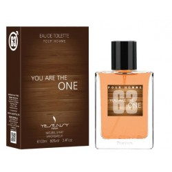 YOU ARE THE ONE Pour Homme Eau De Toilette Spray 100 ML